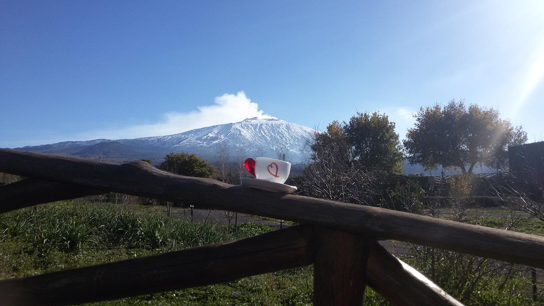 L'Etna vista dall'azienda agricola Musa di Bronte