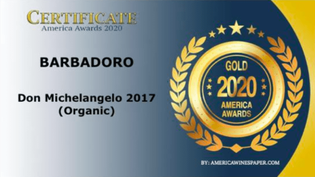 Gold 2020 America Award