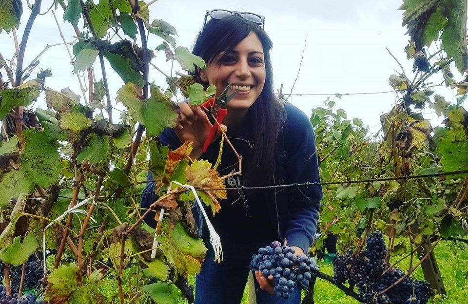 I produttori del vino della Sicilia orientale al tempo del Coronavirus: «La natura non si ferma»
